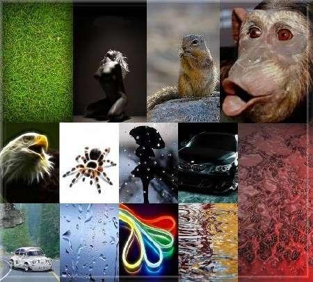 Мобильные обои и картинки 2011