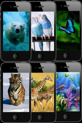 50,000+ Retina Wallpapers Pro v1.8 [.ipa/iPhone/iPod Touch]