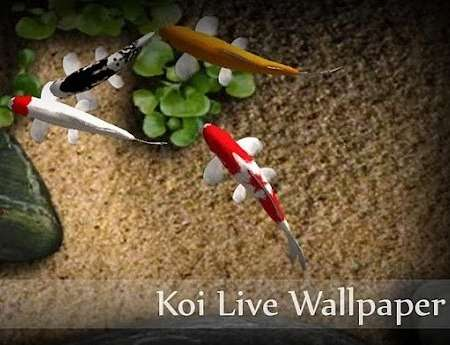 Koi Live Wallpaper (Android 2.1+)